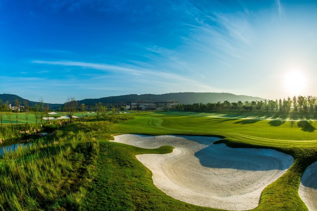 Travel Fore-Caddie: A Guide to Golfing
